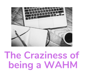 The Craziness of Being a WAHM